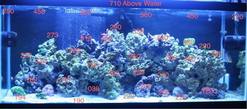 Neptune System S Par Monitoring System Reefs Com